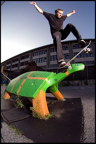 clark-hassler-turtle-head-wallie